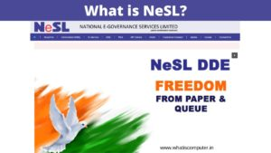 What is NESL: What is the Purpose of NeSL